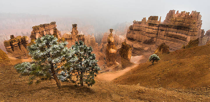 Larry Marshall - Bryce Canyon National Park