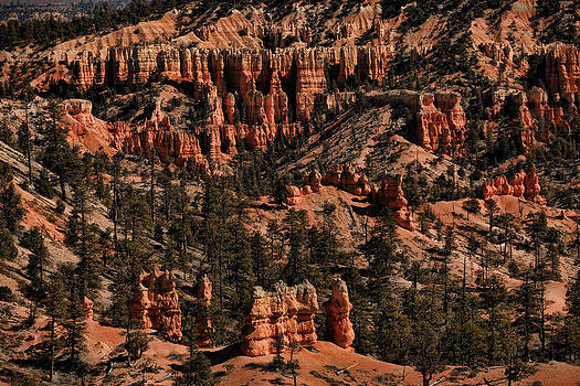 Bryce Canyon by Ronald Lafleur