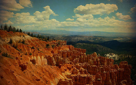 Terry Eve Tanner - Bryce Canyon