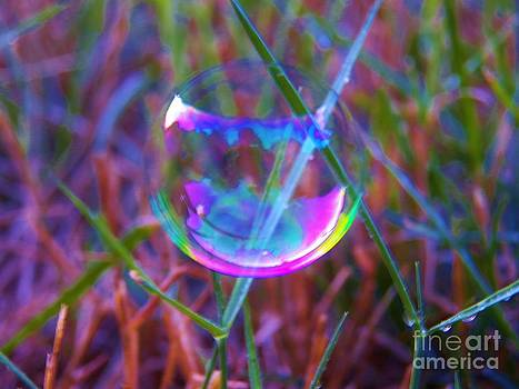 Judy Via-Wolff - Bubble Illusions 3