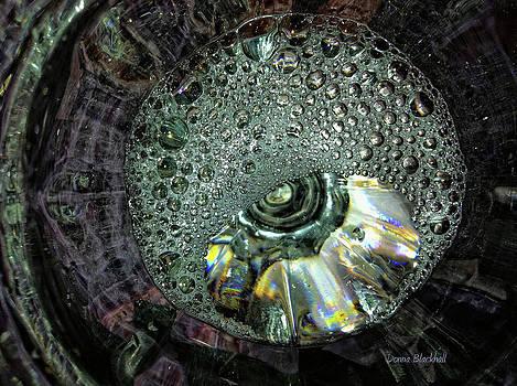 Donna Blackhall - Bubble Trouble
