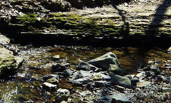 Bubbling Brook by Brigitte Emme