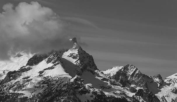 Buck Mountain by Ross Murphy