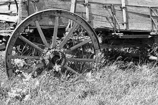 Buckboard Wagon Wheel  by Juls Adams