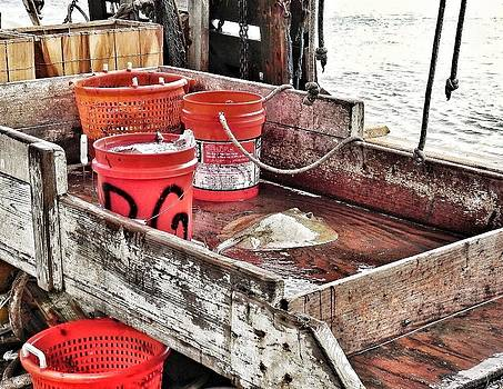 Buckets of Seafood and a Stingray by Patricia Greer