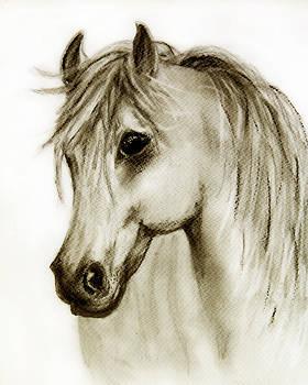 Buckskin  by Linde Townsend