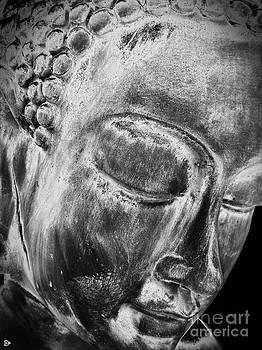 Buddha by Andy Heavens