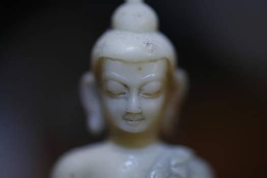 Buddha by Brady D Hebert