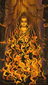 Vrindavan Das - Buddha. Fire of meditation