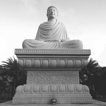 Buddha in Enlightenment  by DM Photography- Dan Mongosa