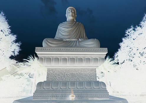 Buddha in Enlightenment II by DM Photography- Dan Mongosa