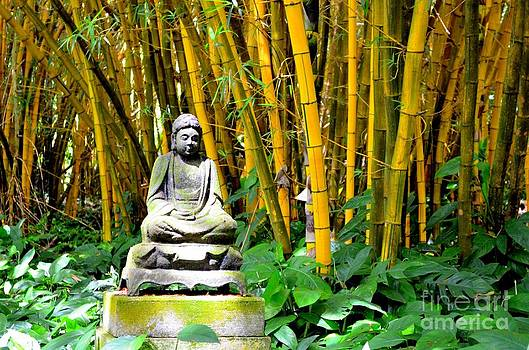 Mary Deal - Buddha in the Bamboo Forest