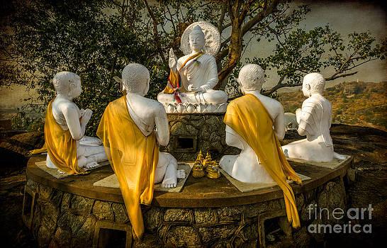 Adrian Evans - Buddha Lessons