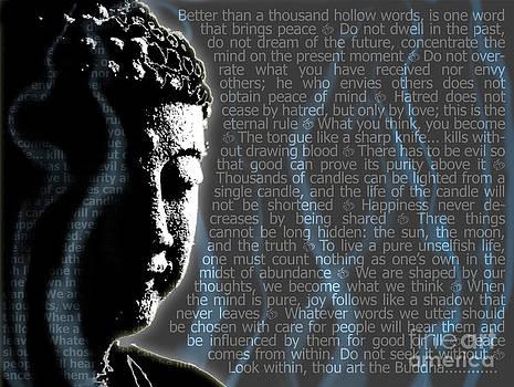 Sassan Filsoof - Buddha quotes