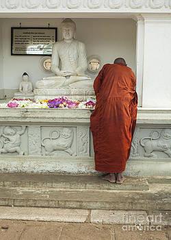 Patricia Hofmeester - Buddhist monk praying