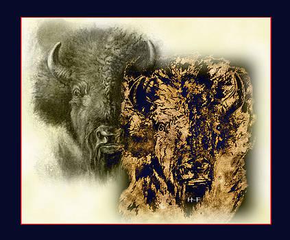 Buffalo Transformers by Herbert French