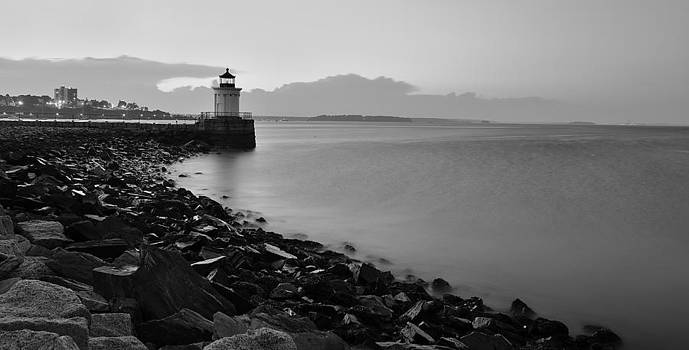 Bug Light by Paul Noble