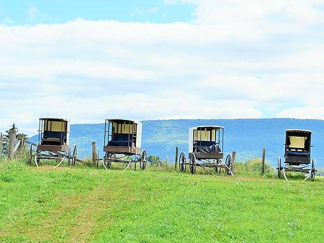 Buggies in a Row by Jeanette Oberholtzer