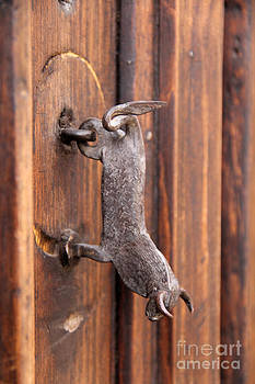 Bull Door Knocker San Cristobal Mexico by Linda Queally