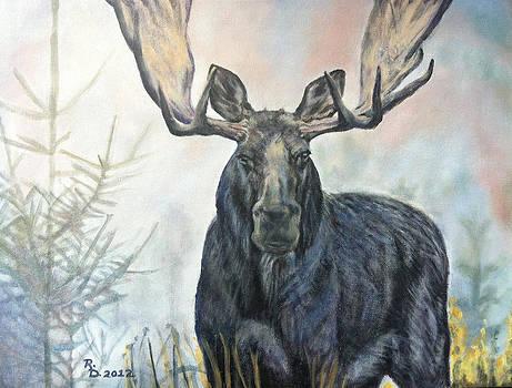 Bull Moose 2 by Rayna DeHoog