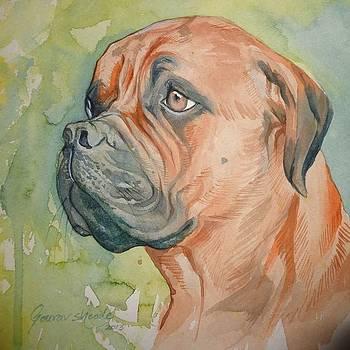Bulldog by Gourav Sheode
