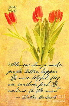 Bunch of Tulips for the Mind by Lori Frostad