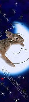 Jeanette K - Bunny Rabbit on Moon # 532