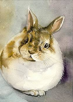 Alfred Ng - bunny waiting for Easter