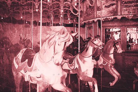 Burlington Carousel  by Steven  Taylor