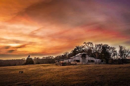 Burning Skies by Elizabeth Wilson