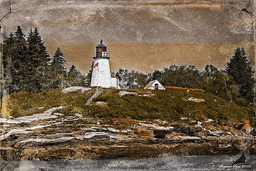 Burnt Island Lighthouse by Suzanne Stout