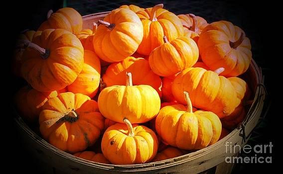 Bushel Of Pumpkins by Kathleen Struckle