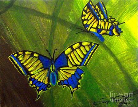Butterflies are Free by Jayne Kerr
