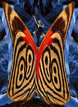 Butterflies by Vasil Yankulski