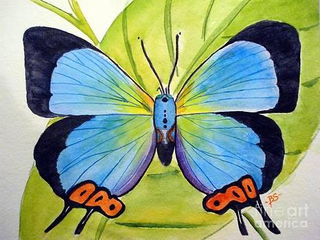 Butterfly 1 by Bonnie Schallermeir