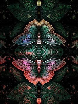 Butterfly Abstraction by Allen Beilschmidt