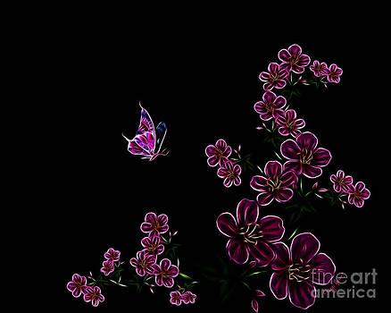 Cheryl Young - Butterfly Dancer 1