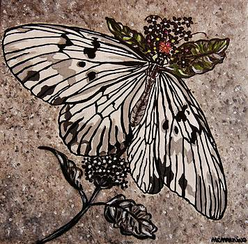 Butterfly Delight by Celeste Manning