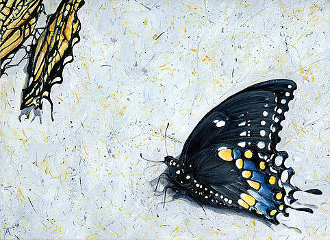Butterfly Effect by Tracy Anderson