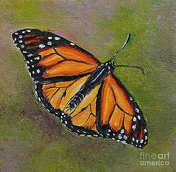 Butterfly by Gayle Utter