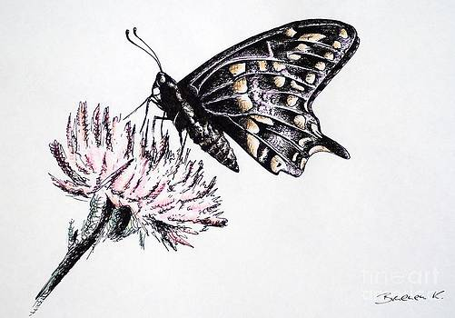 Butterfly by Katharina Filus