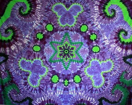 Butterfly Mandala by Carl McClellan