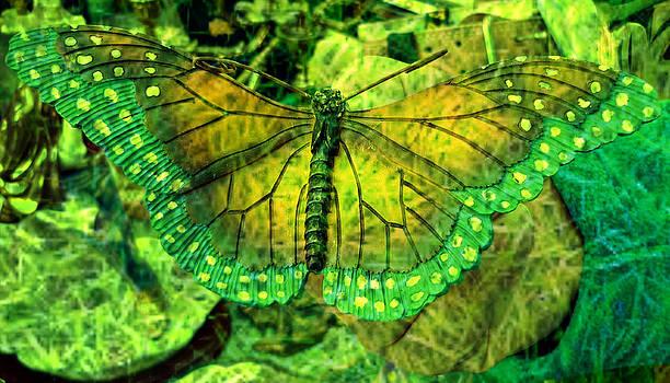 Butterfly mimetism by Jo Ann