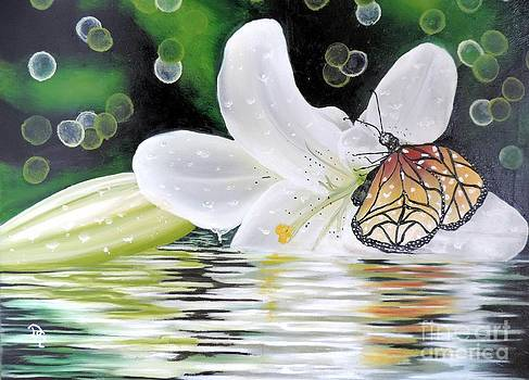 Butterfly series seven by Dianna Lewis
