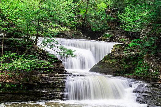 Buttermilk Falls Landscape by John Baumgartner