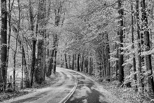 Chuck Kuhn - BW Southern Roads