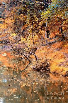 Maria Urso  - By the Bank of the Golden Forest