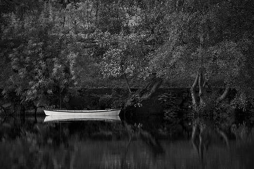 By the River Bank by Antonio Jorge Nunes