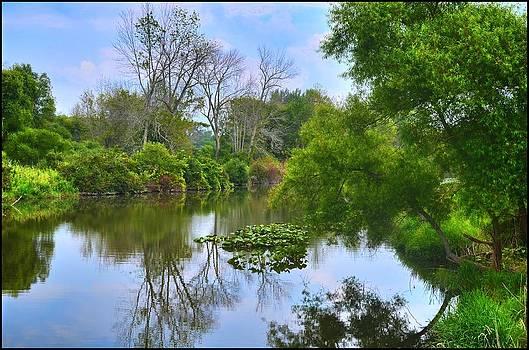 By the River by Jeffrey Platt