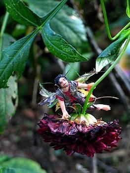 Bynum Run Garden Whisp by Tamara Stickler